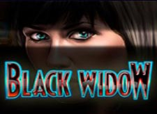 Black Widow Slot Online