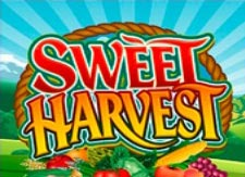 Sweet Harvest Slot online
