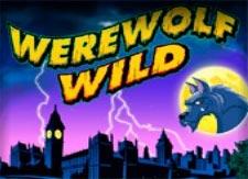 Werewolf Wild Slot Games