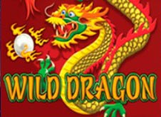 Wild Dragon Slot online