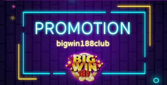 Promotion-Bigwin
