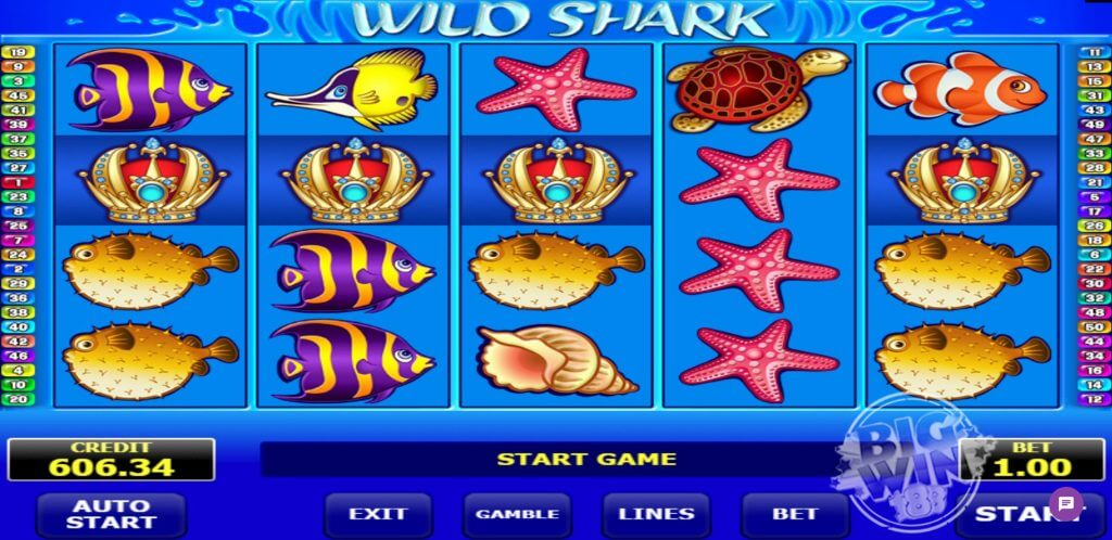Wild Shark Slot